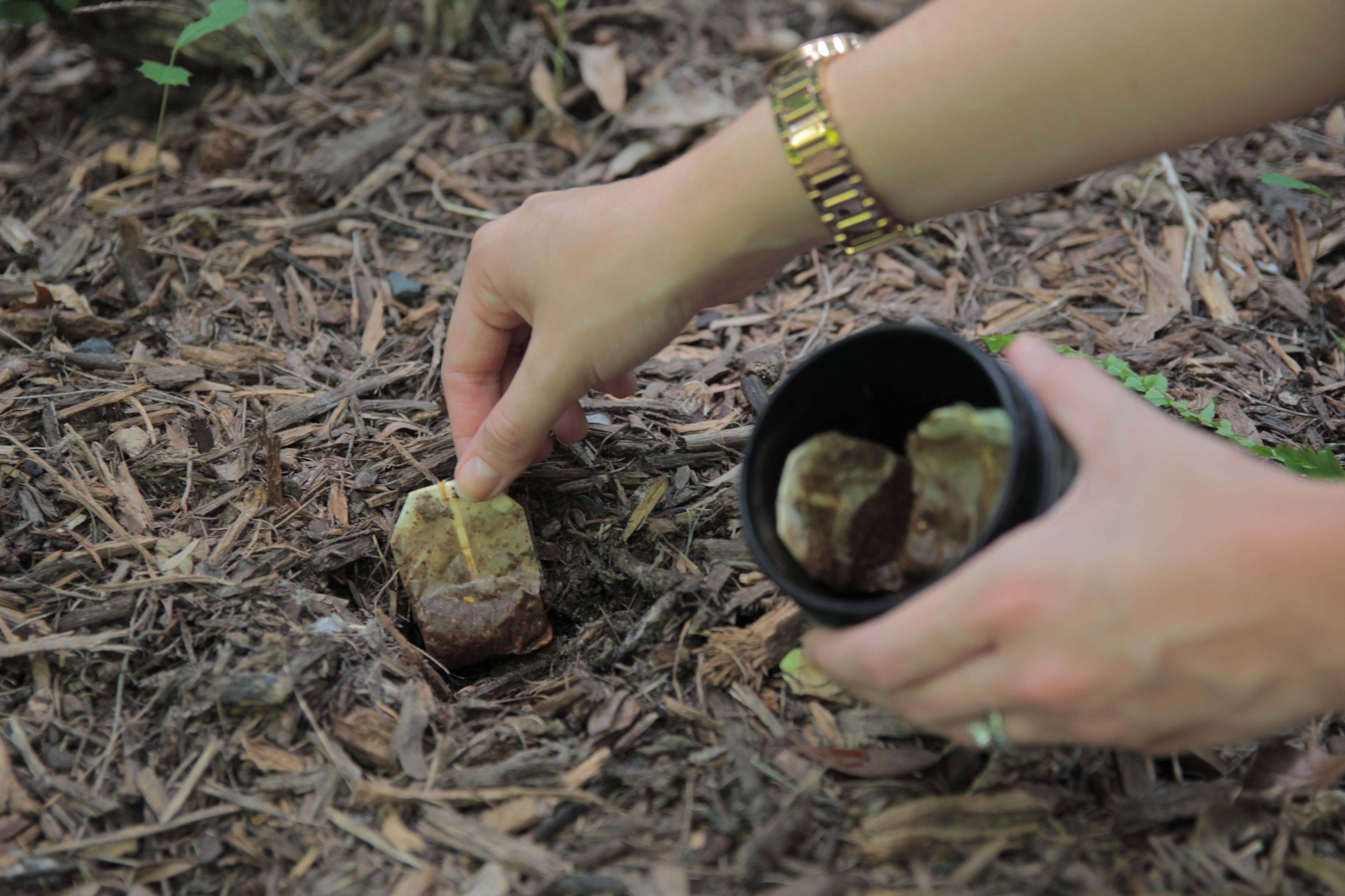 Tea In The Garden Capresso